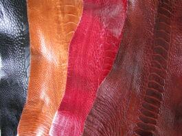 Ostrich Leg skins
